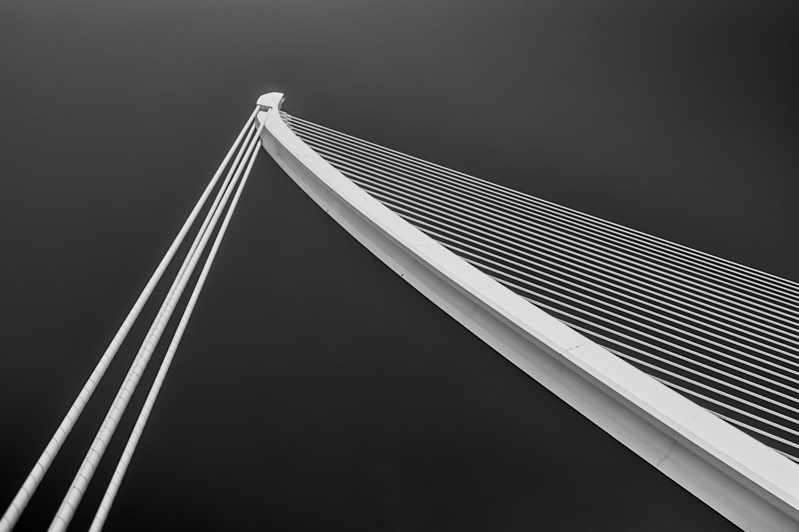 Abstract image of architecture - long white rods shooting up into the sky. The photo is black and white.
