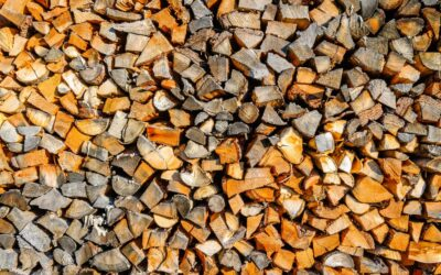 Biomass for the masses