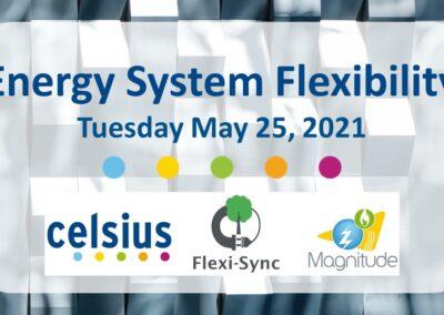 Webinar: Energy System Flexibility