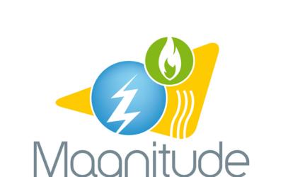 Flexibility Through Multi-Energy System Integration